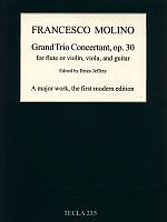 molino-grand-trio-concertant-op-30